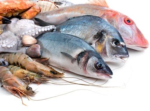 Hải sản là loại thực phẩm chứa chất cấm, kháng sinh cao nhất