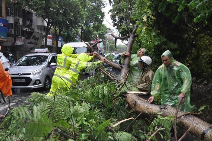 CSGT Hà Nội huy động 100% lực lượng, phương tiện chống bão