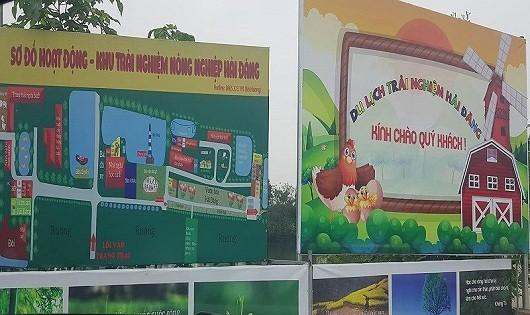 Hà Nội chỉ đạo làm rõ việc sử dụng hàng chục nghìn m2 đất nông nghiệp sai mục đích tại xã Yên Mỹ