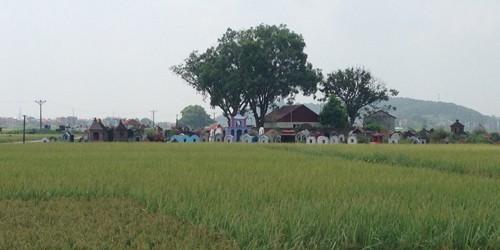 Nghĩa địa nơi phát hiện thi thể chị Tuyết.
