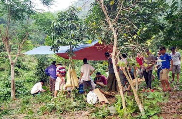 Khu người dân phát hiện nạn nhân Tuyên tre cổ tự tử (Nguồn ảnh Báo Lào Cai).