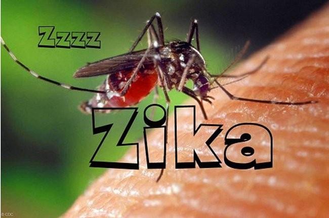 Thêm 6 người nhiễm virus Zika ở TP HCM