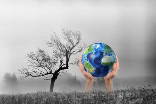 Thủ tướng yêu cầu nâng cao nhận thức về biến đổi khí hậu