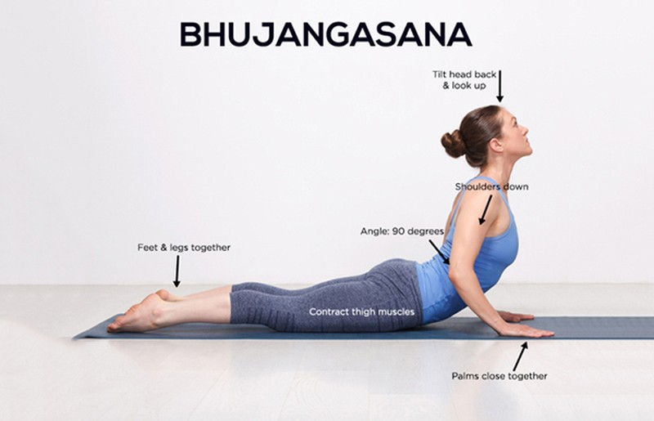 triet-tieu-mo-bung-lau-nam-voi-3-dong-tac-yoga-ai-cung-co-the-tap