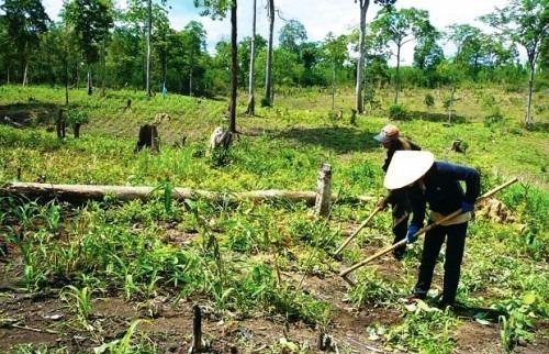 Miễn, giảm tiền sử dụng đất đối với người có công