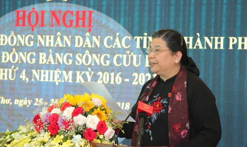 Phó Chủ tịch thường trực Quốc hội Tòng Thị Phóng phát biểu tại hội nghị.