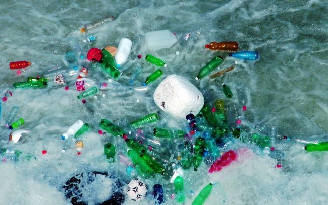 Ăn thực phẩm nhiễm vi nhựa nguy hiểm như thế nào?