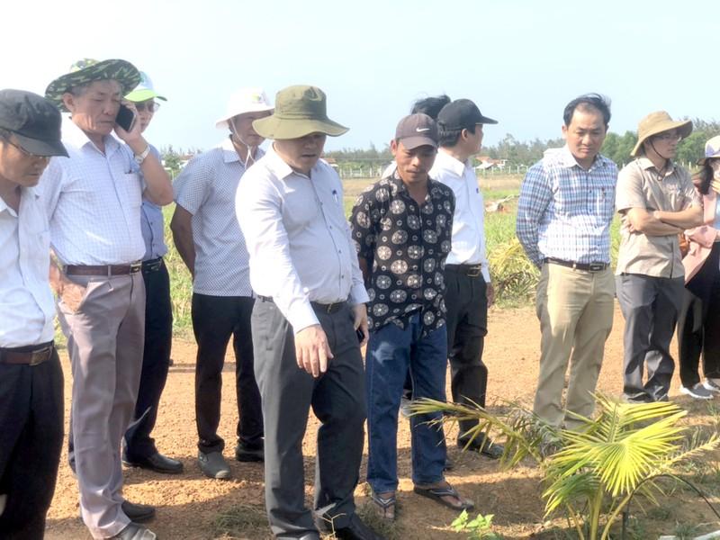 Dự án nông nghiệp tại xã Đức Minh nằm trong khu vực Cty Phát Đạt khảo sát, lập dự án.