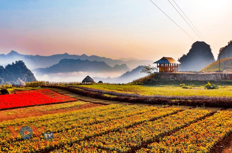 Hà Giang, Yên Bái thúc đẩy trọng điểm kinh tế liên tuyến Tây Bắc