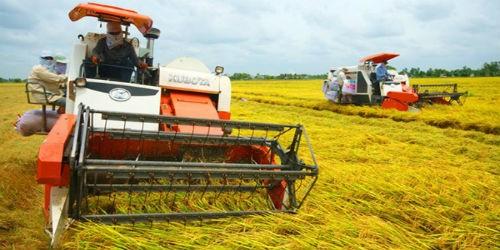 Máy nông nghiệp hàng Trung Quốc vẫn lấn át thị trường