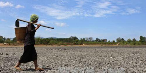 """Hạn hán đã """"bức tử"""" 50.000ha đất nông nghiệp"""