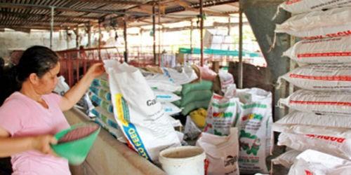 Thị trường thức ăn chăn nuôi đang bị doanh nghiệp FDI thao túng