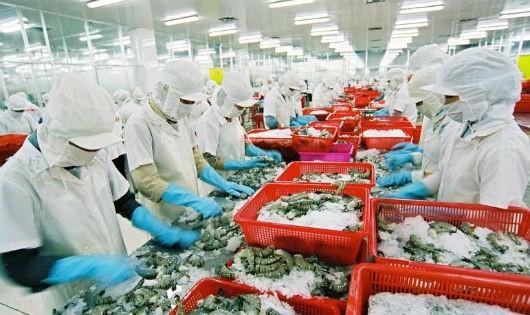Mỹ được kỳ vọng là thị trường hàng đầu trong xuất khẩu thủy sản năm 2016