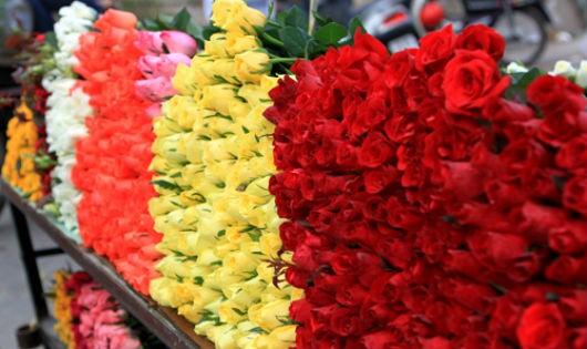 Đa dạng chủng loại hoa ở các chợ hoa Hà Nội