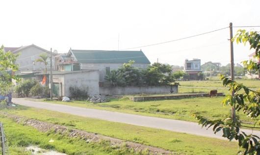 Chỉ một phần diện tích khu TĐC cầu Bến Thủy 2 được sử dụng còn lại vẫn để hoang cỏ dại mọc