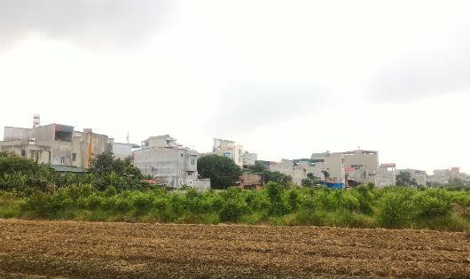 """Những ngôi nhà kiên cố """"mọc"""" trên đất nông nghiệp"""