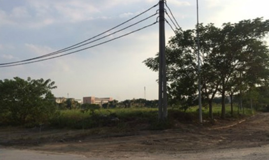 Các khu đất xây dựng khu nhà ở giãn dân phố cổ cỏ mọc um tùm chưa biết bao giờ có nhà. Ảnh: Tú Anh
