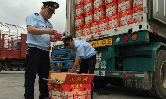 Cục Điều tra Chống buôn lậu: Nòng cốt phòng, chống buôn lậu ma túy qua biên giới của Hải quan