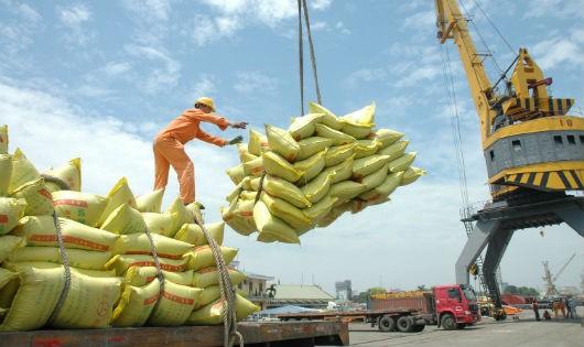"""29 lô gạo xuất khẩu bị Hoa Kỳ trả về: Do đâu người Mỹ """"chê"""" gạo Việt?"""