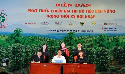 VietABank cấp 500 tỷ tín dụng ưu đãi để phát triển hồ tiêu Tây Nguyên