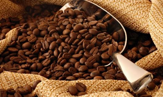 Ngành hàng cà phê có mô hình hợp tác PPP hiệu quả nhất trong lĩnh vực nông nghiệp
