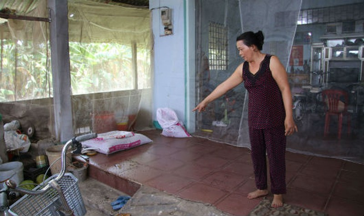 """Người dân phải sống trong cảnh phủ màn lưới che khắp nhà để """"đối phó"""" với ruồi, mùi hôi, khói bụi"""