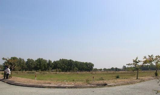 Sau 15 năm, khu vực xây dựng nhà tái định cư cho người dân chịu ảnh hưởng của dự án cũng chỉ là đám đất trống, lầy lội