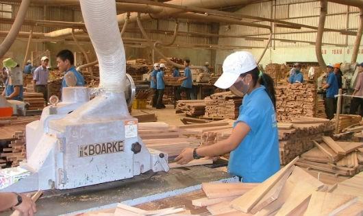"""Vụ doanh nghiệp xuất khẩu gỗ phải có chứng chỉ Cites: """"Không vơ đũa cả nắm""""!"""
