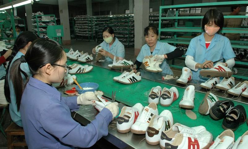 Hoạt động của doanh nghiệp da giày có khởi sắc hơn năm 2016