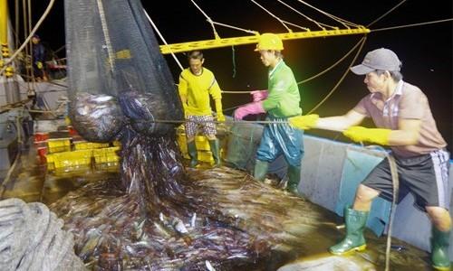 Chủ tàu cá có phải mua cả BHXH bắt buộc và BH tại các doanh nghiệp kinh doanh BH?