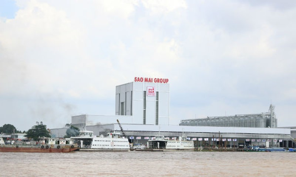 Sao Mai Super Feed từ ngã ba sông Hậu