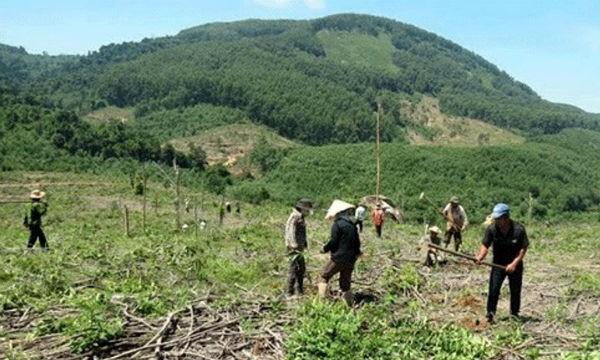 Hòa Bình: Hàng loạt sai phạm trong quản lý, sử dụng đất có nguồn gốc nông, lâm trường
