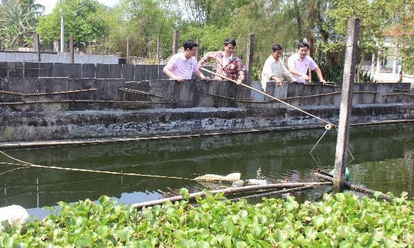 Cán bộ NHCSXH huyện thăm mô hình nuôi cá Chình của bà Nguyễn Thị Lang (xã Vinh Mỹ, huyện Phú Lộc, TT-Huế)