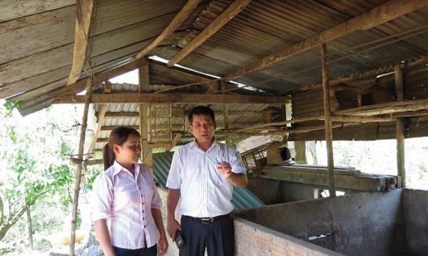 Phó Tổng giám đốc NHCSXH Nguyễn Văn Lý trao đổi với hộ vay vốn Hồ Thị Danh (dân tộc Cadong, xã Trà Đốc, huyện Bắc Trà My, Quảng Nam) về hiệu quả sử dụng vốn chính sách