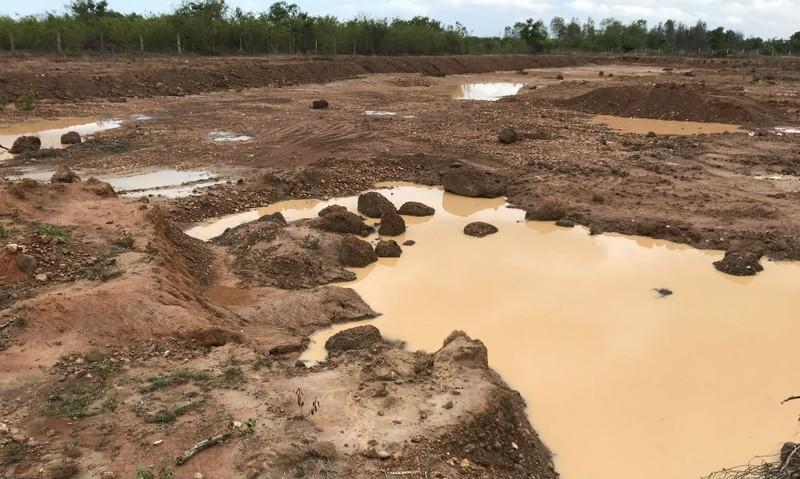 Khung cảnh tại vùng đất thuộc dự án trang trại thanh long của Công ty Hồng Ân