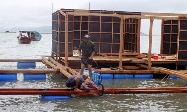 Sau bão nhiều vùng nuôi tôm hùm trên biển Khánh Hòa đang từng bước khôi phục
