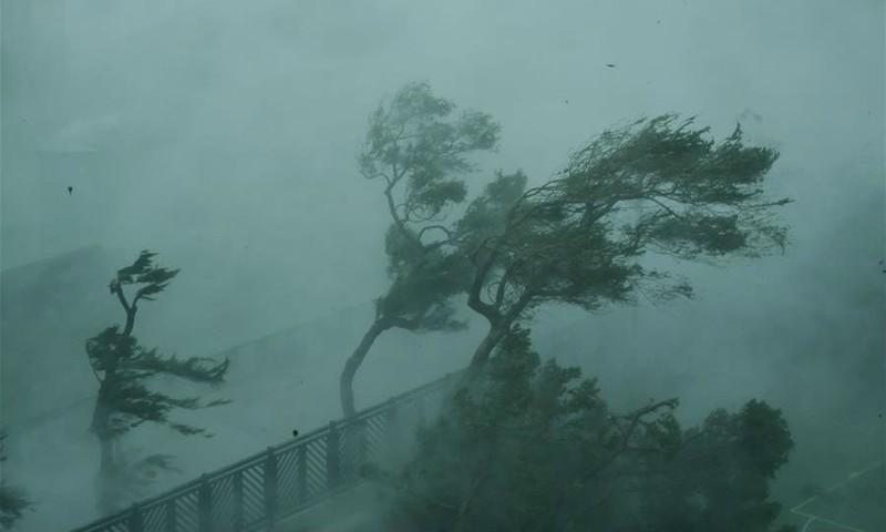 Gió giật mạnh do bão ở Hong Kong, phía nam Trung Quốc