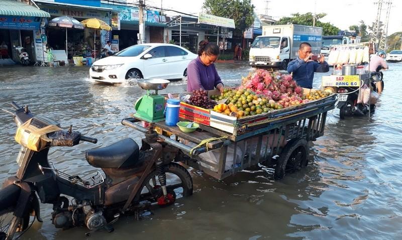 Triều cường dâng cao, làm tuyến Quốc lộ 1A qua địa bàn tỉnh Bạc Liêu bị ngập sâu, cuộc sống người dân bị đảo lộn, giao thông qua khu vực gặp nhiều khó khăn.