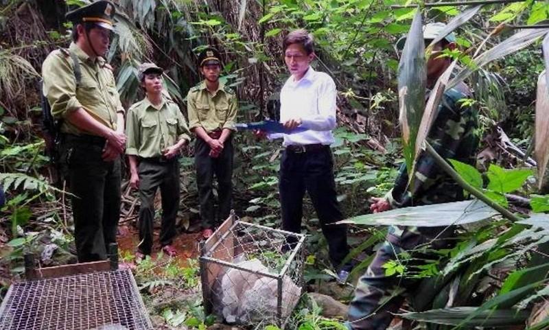 Rừng đặc dụng đang được Hạt Kiểm lâm thuộc Ban Quản lý các rừng bảo vệ tận gốc