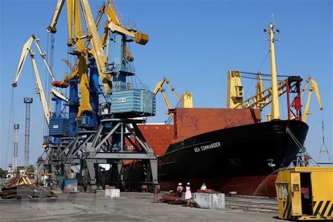 Tàu neo tại cảng Mariupol trên biển Azov, ngày 16/8/2018. (Ảnh: AFP/TTXVN)
