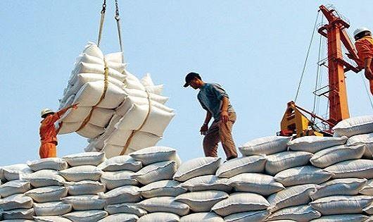 100.000 tấn gạo Việt Nam chuẩn bị xuất khẩu sang Trung Quốc