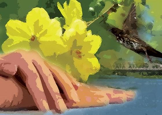 Cánh tay và mùa Xuân (Truyện ngắn)