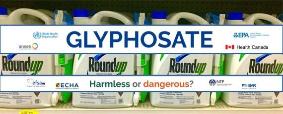 Các cơ quan pháp chế và tổ chức nghiên cứu sức khỏe toàn cầu nói về glyphosate
