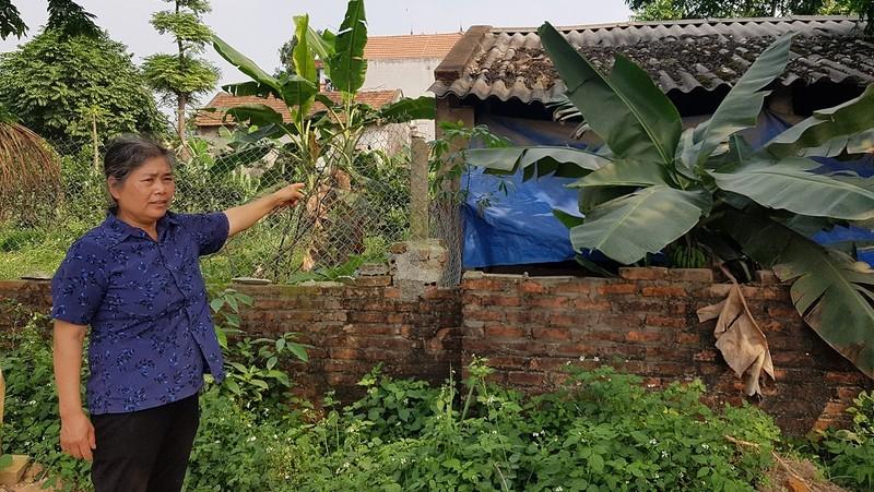 Trang trại gà xây trái phép trên đất nông nghiệp của gia đình ông Trần Văn Yên (thôn Đồng Mận, xã Kim Long, huyện Tam Dương) gây ô nhiễm môi trường là nguồn cơn gây tranh chấp, mâu thuẫn giữa hai hộ gia đình suốt 10 năm
