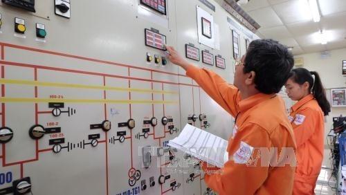 Nhà nước giữ 100% vốn điều lệ tại Tập đoàn Điện lực Việt Nam. Ảnh: Mạnh Khánh/TTXVN