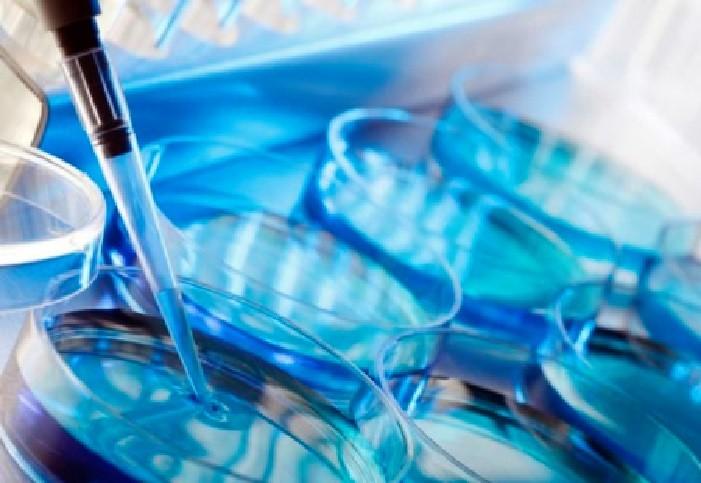Quy định cần biết về sinh con bằng kỹ thuật thụ tinh trong ống nghiệm