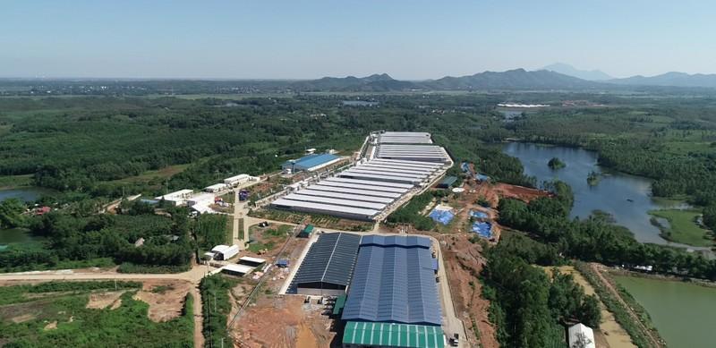 Trại gà Hòa Phát Phú Thọ nằm trên ba ngọn đồi cao nhất khu vực