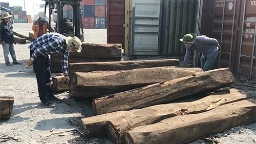 Giáng hương Tây Phi lại được khai là gỗ Gõ
