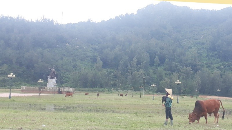 Khu vực Tượng đài Vua Mai Hắc Đế thi công dang dở, nhếch nhác, hiện là bãi chăn thả trâu bò, gây mất mĩ quan