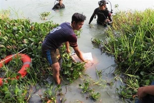 Lực lượng cứu hộ, cứu nạn tìm vớt nạn nhân. (Ảnh: Nguyễn Văn Việt/TTXVN)